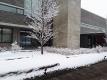 雪が積もった病院