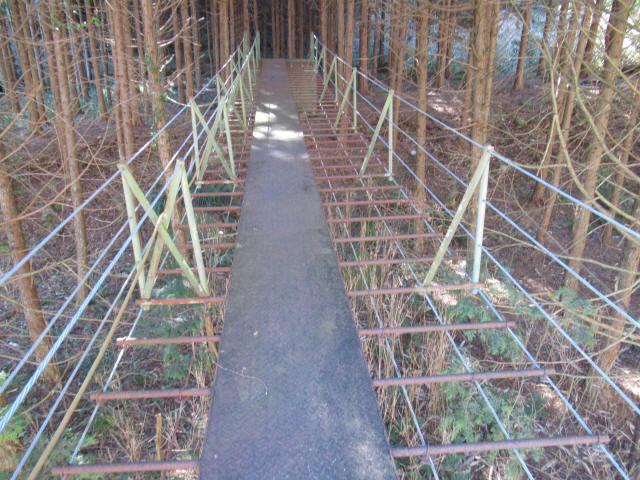 板井沢の吊橋9