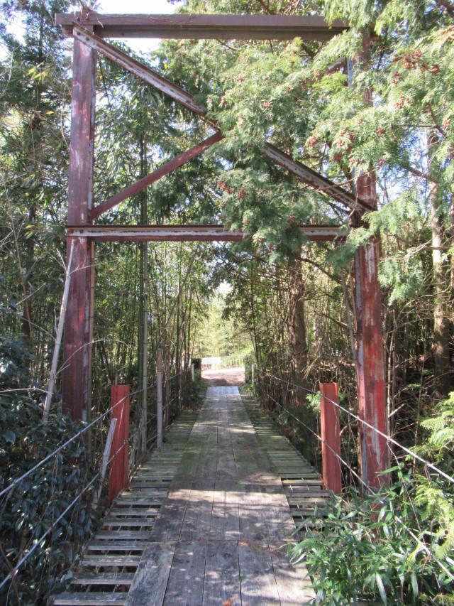 硲の花橋9