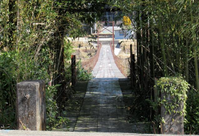 硲の花橋8