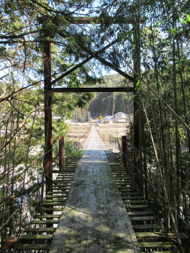 硲の花橋0