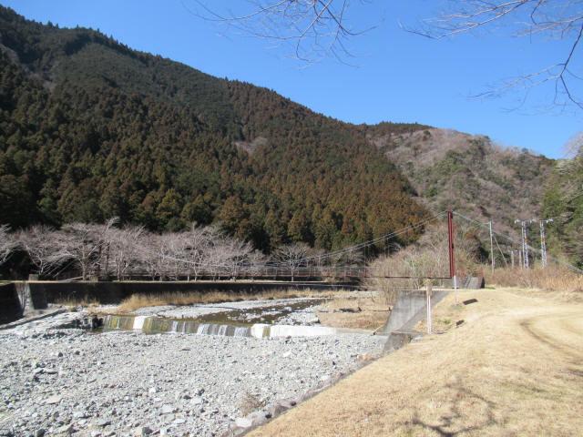 佐野川キャンプ場の吊橋1