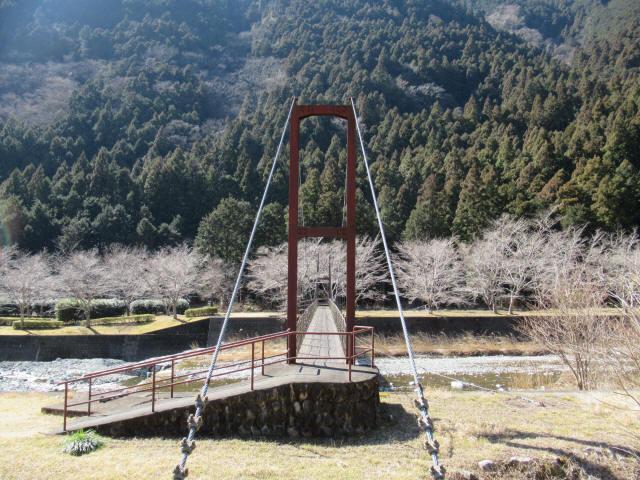 佐野川キャンプ場の吊橋2