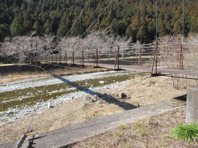 佐野川キャンプ場の吊橋5