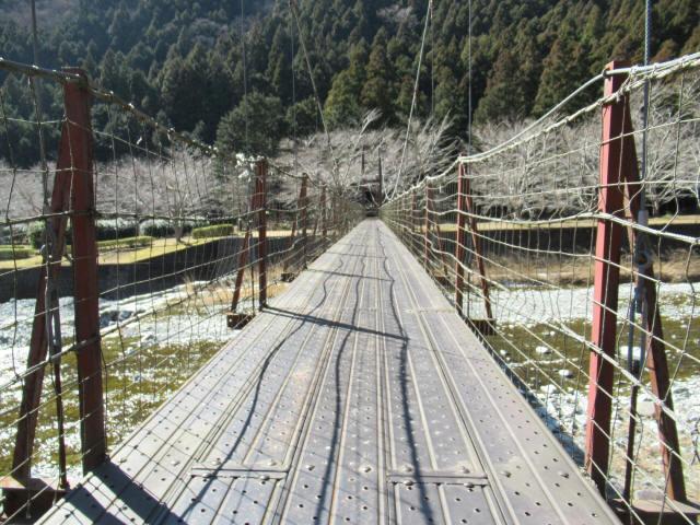 佐野川キャンプ場の吊橋8