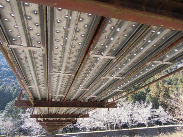 佐野川キャンプ場の吊橋0