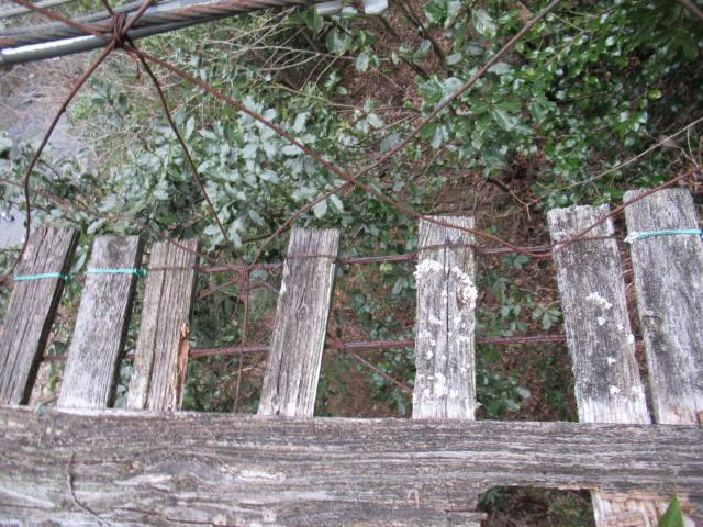 下小藪川の吊橋0
