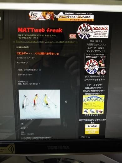 MATTWEBエビルアー (1)