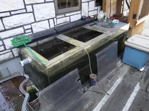大水槽 (1)