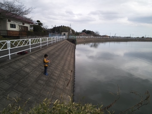 片貝→おじゃがいけ (26)