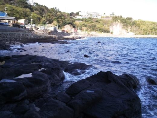 真鶴琴ヶ浜 (37)