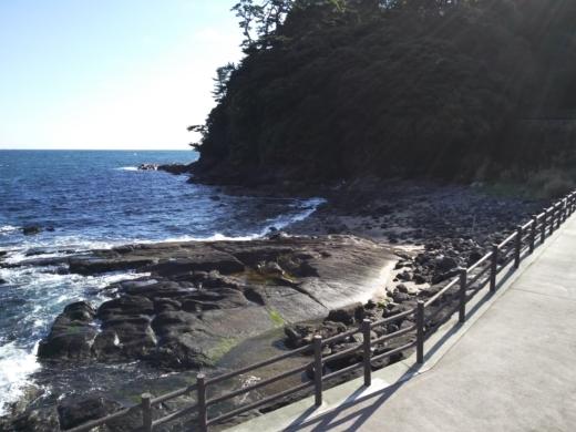 真鶴琴ヶ浜 (42)