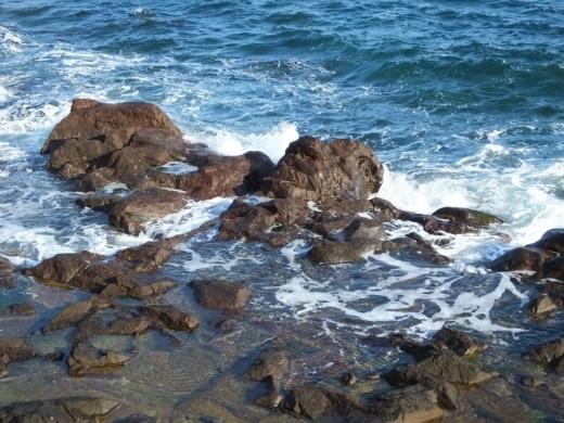 真鶴琴ヶ浜 (3)