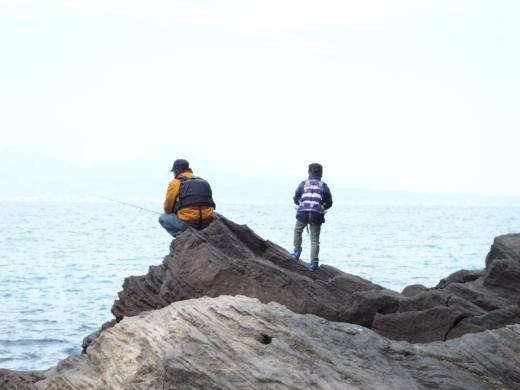真鶴琴ヶ浜 (5)