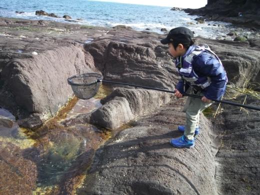 真鶴琴ヶ浜 (50)