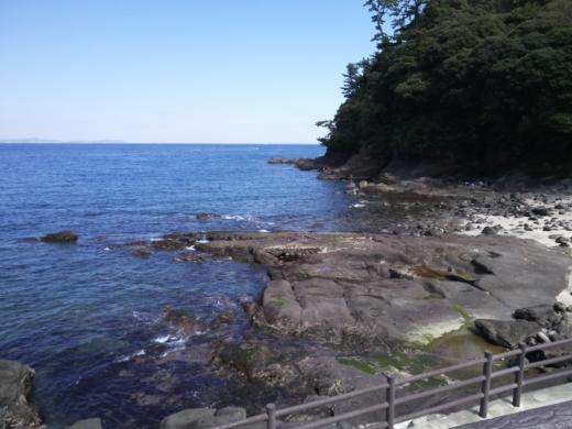 真鶴琴ヶ浜 (63)