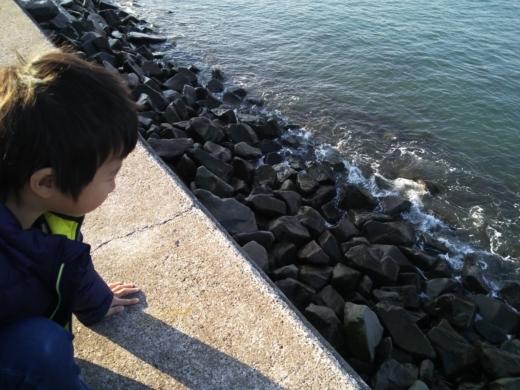梵天の鼻で釣り (9)