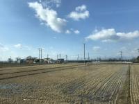 琵琶湖畔はいい天気180212
