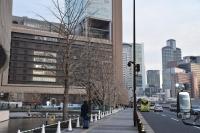 大阪駅前の並木道180209