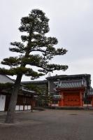 日本庭園っぽい180210