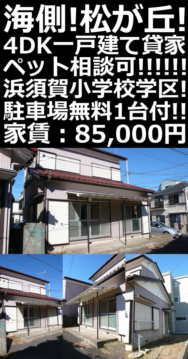■物件番号5254 海側!松が丘!4DK一戸建て貸家!64平米!駐車場無料8.5万円!ペット相談可!