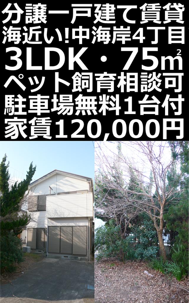 ■物件番号P5274 海3分!中海岸!分譲一戸建て賃貸!3LDK!ペット相談可!P無料12万円!