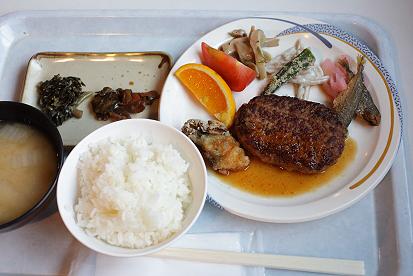 hakuba-nagano-150715-0747.jpg