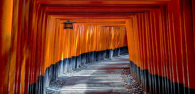 toriii.jpg
