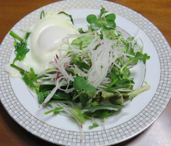 旬野菜料理 冬の生野菜サラダ