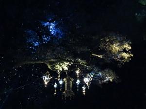 奈良瑠璃絵Ⅱ