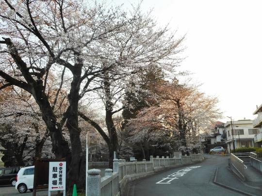 18_03_25-15yugawara.jpg