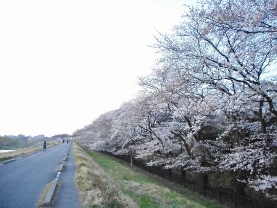 18_03_25-16yugawara.jpg