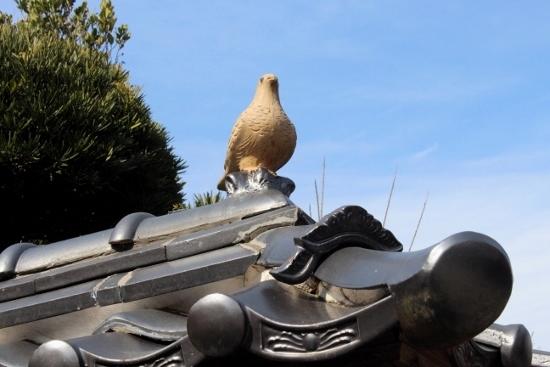 ⑫鳩の屋根