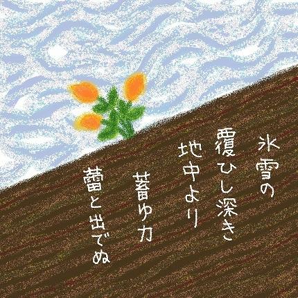 蕾1 - コピー