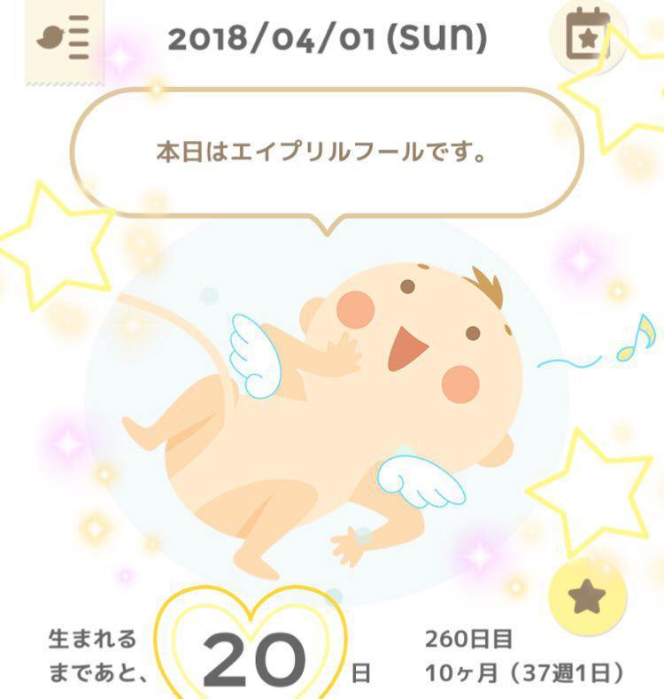 photo_2018-04-01_22-54-37.jpg