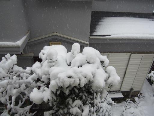 20180123・雪國04