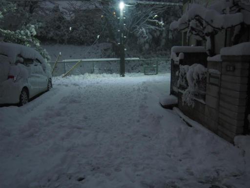20180123・雪國10・雪かき大分やった