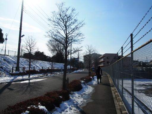 20180128・全徳寺と狭山湖1-05