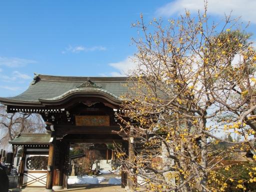 20180128・全徳寺と狭山湖1-09