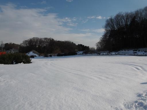 20180128・全徳寺と狭山湖1-19