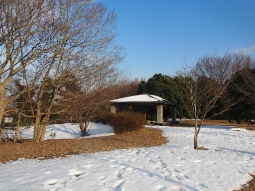 20180128・全徳寺と狭山湖2-12