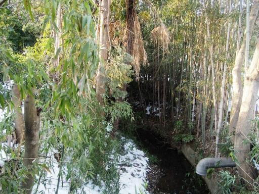 20180128・全徳寺と狭山湖2-16
