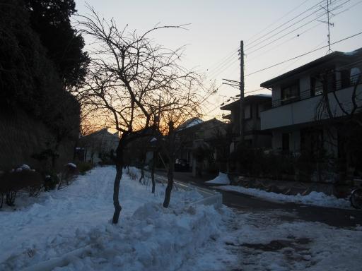 20180128・全徳寺と狭山湖2-24
