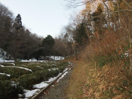 20180128・全徳寺と狭山湖2-19