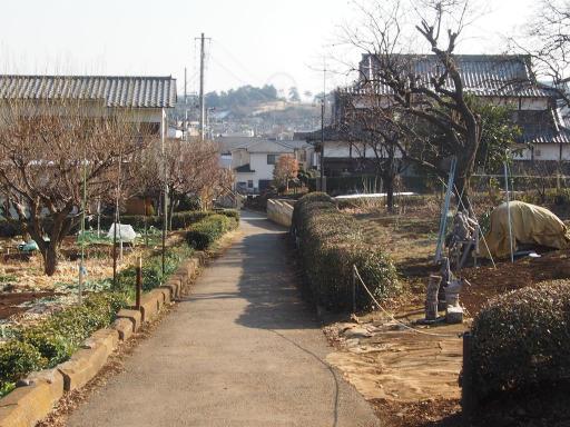 20180210・荒幡富士散歩03