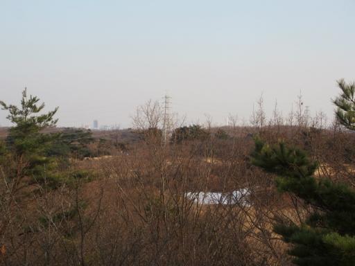 20180210・荒幡富士散歩空09