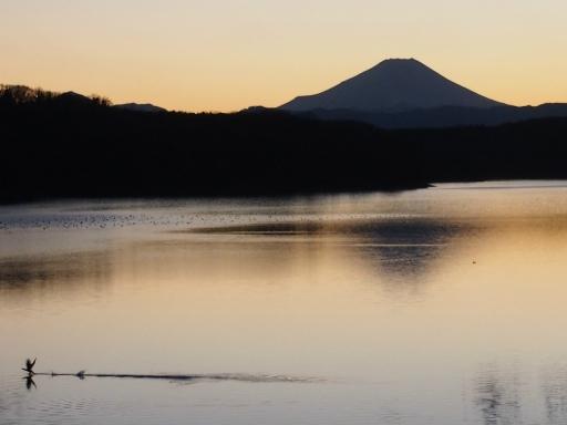 20180219・6.空特選グランプリ(20180102・狭山湖)