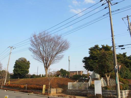 20180311・震災7年目の散歩空04