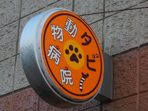 20180325・墓参りネオン6