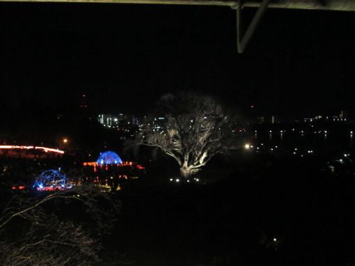 夜梅祭0001_3